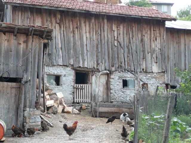 [Obrazek: BULGARIA%202009%20300.JPG]