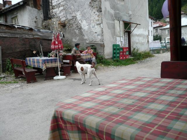 [Image: BULGARIA%202009%20421.JPG]