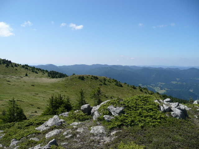 [Image: BULGARIA%202009%20490.JPG]